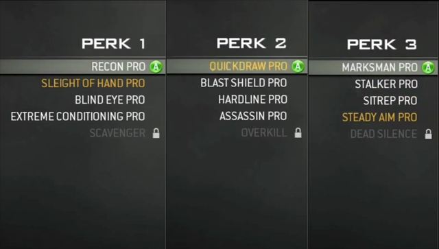 Modern warfare 3 perks guide.