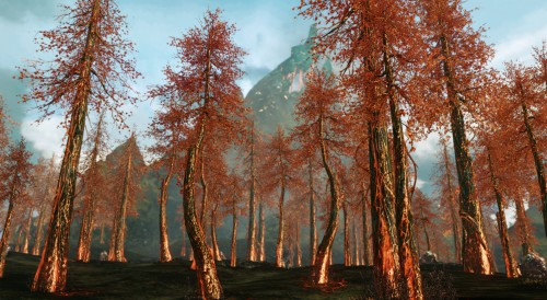 ArcheAge fire wood