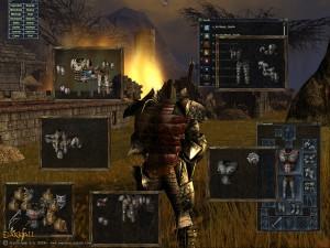 Darkfall interface